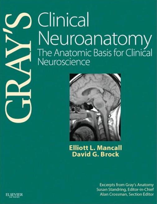 GRAY'S Clinical Neuroanatomy : The Anatomic Basis for Clinical Neuroscience
